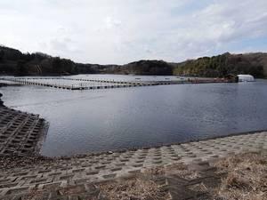 宮沢湖 7-s.JPG