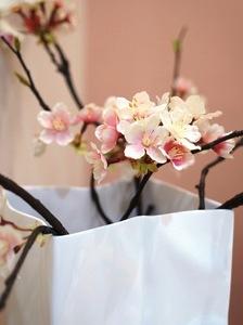 桜糸6.JPG