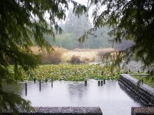 風景1.JPG