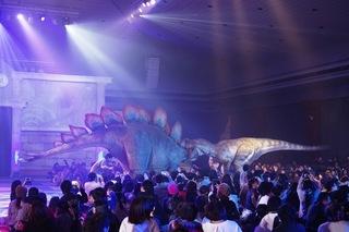アロサウルス ステゴサウルス.JPG