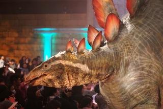 ステゴサウルスアップ.JPG