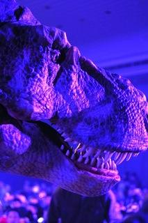 ティラノサウルスアップ.JPG